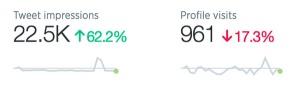Find in-depth visitor Tweet Analytics for Social Media